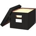 Stor/File Pinstripe Decorative Storage Box - Letter/Legal, Carton of 4